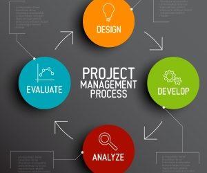 Projekte zum Erfolg führen!