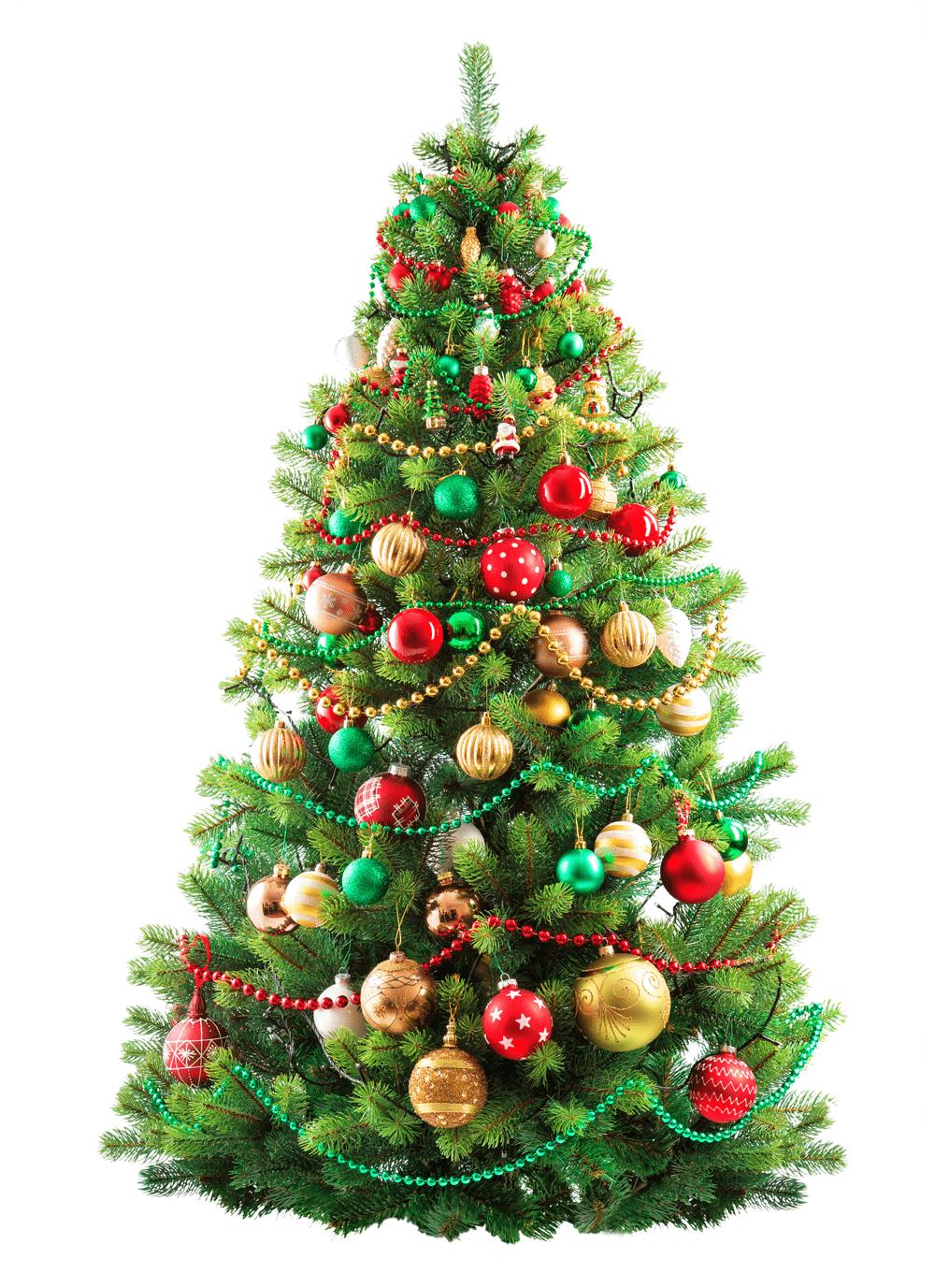 Lieblings-Weihnachtsritual